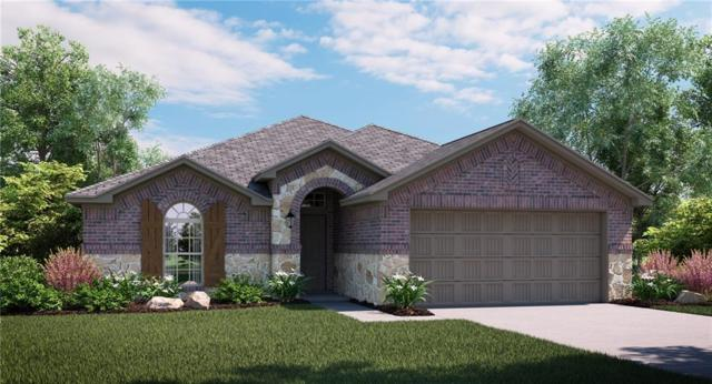 2436 Dolostone Drive, Little Elm, TX 75068 (MLS #14124347) :: Ann Carr Real Estate