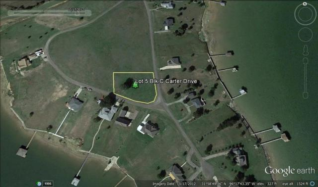Lot 5C Carter Drive, Corsicana, TX 75109 (MLS #14124528) :: RE/MAX Pinnacle Group REALTORS