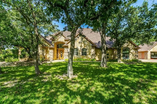 101 Mcclintock Court, Weatherford, TX 76088 (MLS #14124619) :: Lynn Wilson with Keller Williams DFW/Southlake