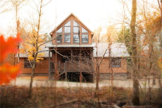 230 Deer Creek Trail, Broken Bow, OK 74728 (MLS #14124842) :: Lynn Wilson with Keller Williams DFW/Southlake