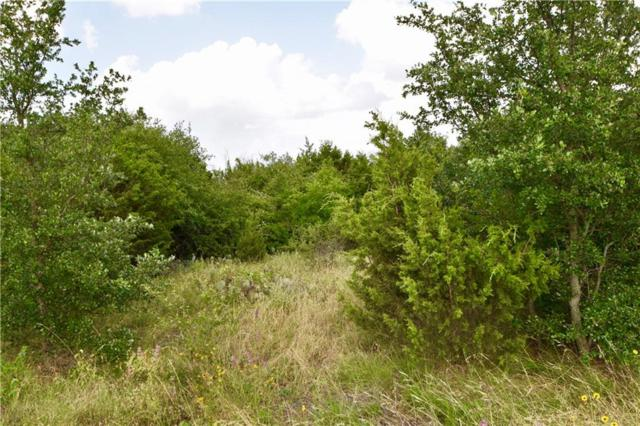 845 Jimmy Houston Way, Bluff Dale, TX 76433 (MLS #14125432) :: RE/MAX Town & Country