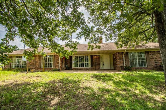 17507 County Road 479, Lindale, TX 75771 (MLS #14125502) :: The Heyl Group at Keller Williams