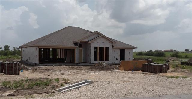 119 Brook Lane, Decatur, TX 76234 (MLS #14125947) :: Lynn Wilson with Keller Williams DFW/Southlake