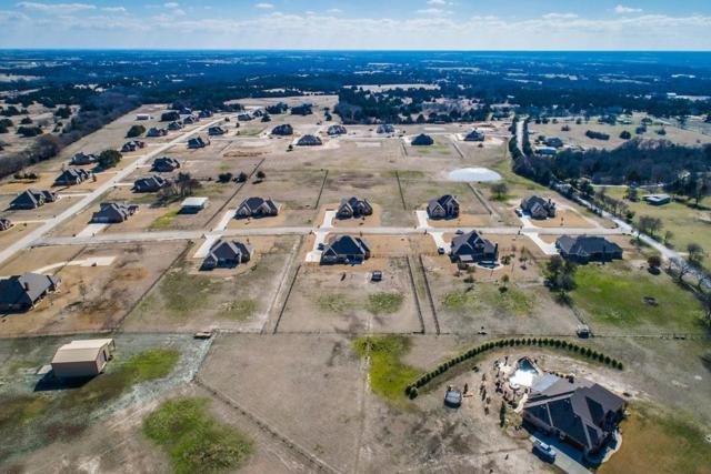 204 Blue Ridge Drive, Waxahachie, TX 75167 (MLS #14126403) :: Lynn Wilson with Keller Williams DFW/Southlake
