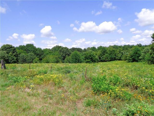 7460 County Road 3914, Athens, TX 75752 (MLS #14127190) :: RE/MAX Town & Country