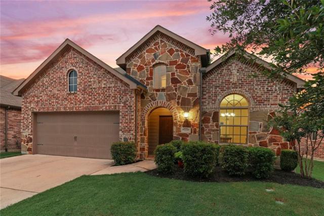 1509 Cedarbird Drive, Little Elm, TX 75068 (MLS #14128263) :: Kimberly Davis & Associates