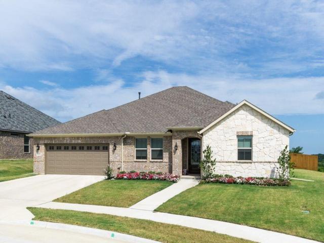 6900 Adventuress Court, Fort Worth, TX 76179 (MLS #14128949) :: Lynn Wilson with Keller Williams DFW/Southlake