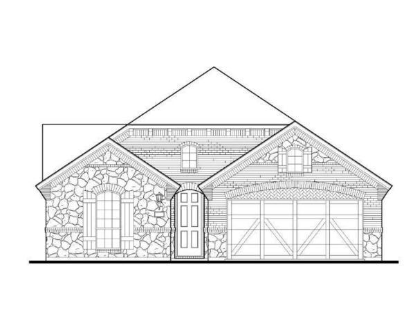 1713 Carnation Street, Celina, TX 75078 (MLS #14129271) :: Real Estate By Design