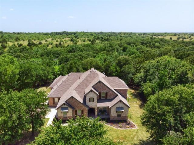 105 Falls Creek Lane, Gunter, TX 75058 (MLS #14129662) :: Lynn Wilson with Keller Williams DFW/Southlake