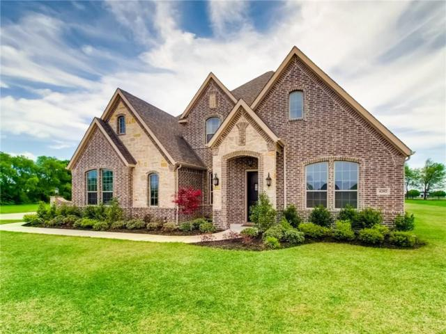 4282 Lake Shore Drive, Mckinney, TX 75071 (MLS #14130037) :: The Heyl Group at Keller Williams