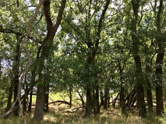 TBD County Rd 2435, Hico, TX 76457 (MLS #14130794) :: The Heyl Group at Keller Williams