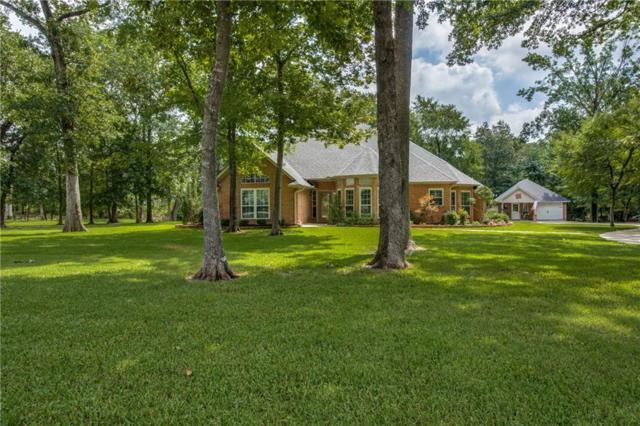 312 Hickory Creek Drive, Sulphur Springs, TX 75482 (MLS #14131046) :: The Rhodes Team