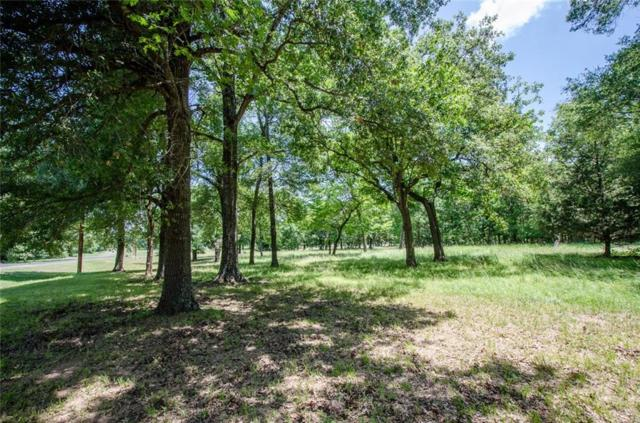 Lot 23 Topaz, Streetman, TX 75859 (MLS #14131186) :: RE/MAX Town & Country
