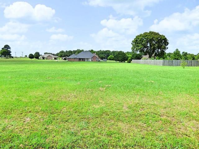 132 Cr 4742, Mount Pleasant, TX 75455 (MLS #14131189) :: Lynn Wilson with Keller Williams DFW/Southlake