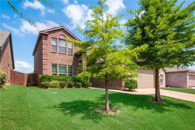 2053 Meadow View Drive, Princeton, TX 75407 (MLS #14131201) :: Lynn Wilson with Keller Williams DFW/Southlake