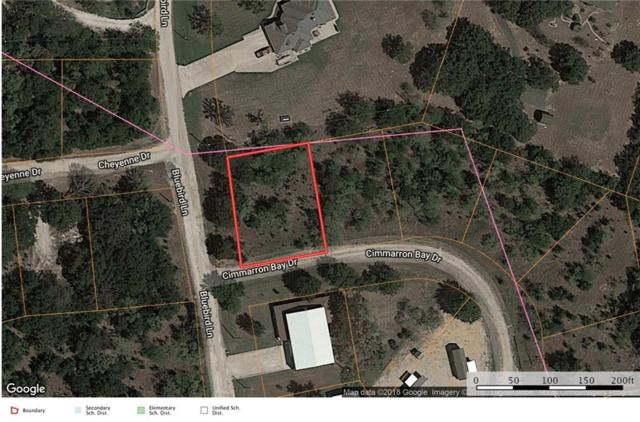 Lot 30 Cimarron Court, Runaway Bay, TX 76426 (MLS #14131302) :: Lynn Wilson with Keller Williams DFW/Southlake