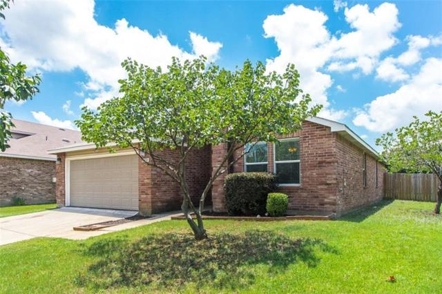 6120 Thackery Drive, Denton, TX 76210 (MLS #14132607) :: Real Estate By Design