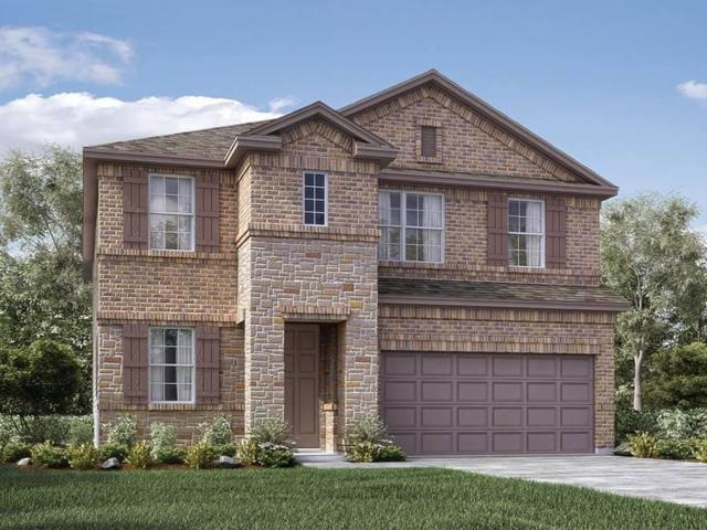 2626 Amistad Drive, Irving, TX 75062 (MLS #14132630) :: RE/MAX Town & Country