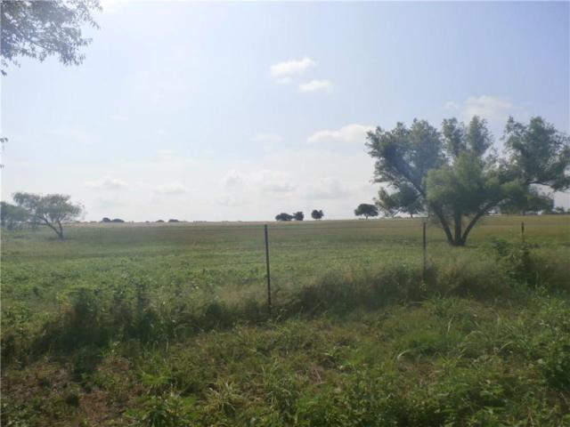 TBD Chisum, Sanger, TX 76266 (MLS #14133196) :: RE/MAX Town & Country