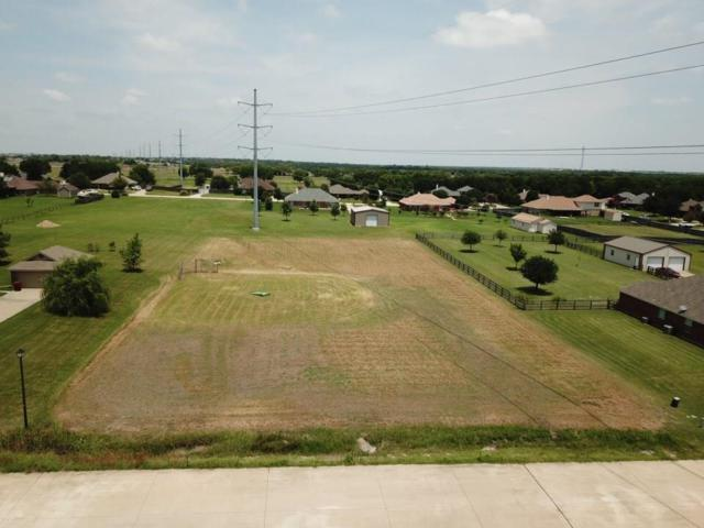 TBD Northstar Drive, Royse City, TX 75189 (MLS #14133328) :: RE/MAX Town & Country