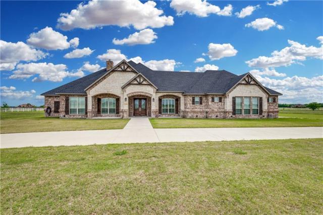 349 Sidewinder Loop, Red Oak, TX 75154 (MLS #14133331) :: The Mitchell Group