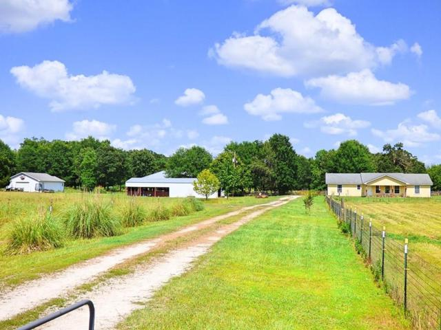 327 Cr 4204, De Kalb, TX 75559 (MLS #14134026) :: RE/MAX Town & Country