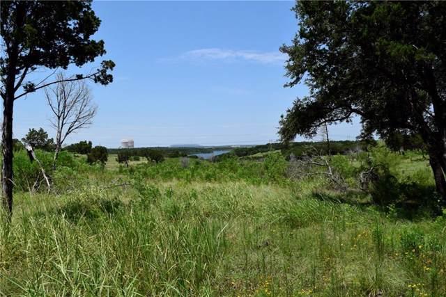 3237 County Road 313 Loop A, Glen Rose, TX 76043 (MLS #14134502) :: HergGroup Dallas-Fort Worth