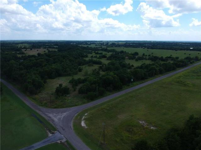Lot 3 County Rd 1107, Farmersville, TX 75423 (MLS #14135290) :: RE/MAX Town & Country