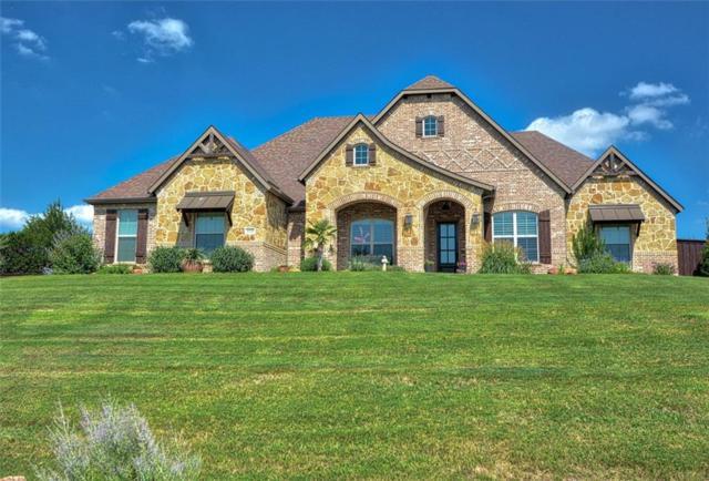 4130 Swan Lake Court, Midlothian, TX 76065 (MLS #14135614) :: Lynn Wilson with Keller Williams DFW/Southlake