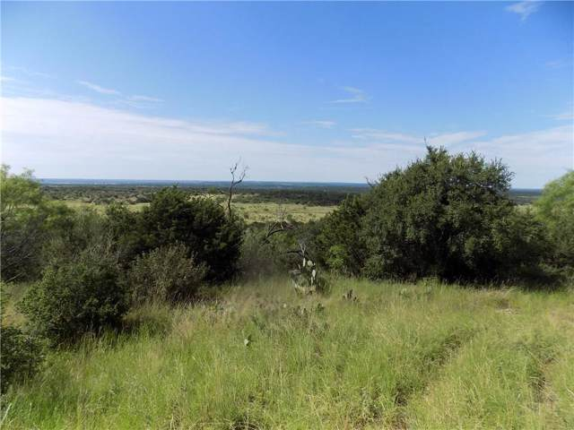 16300 County Road 211, Brookesmith, TX 76827 (MLS #14135860) :: RE/MAX Town & Country