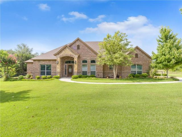 106 Artist Point Court, Azle, TX 76020 (MLS #14136759) :: The Real Estate Station