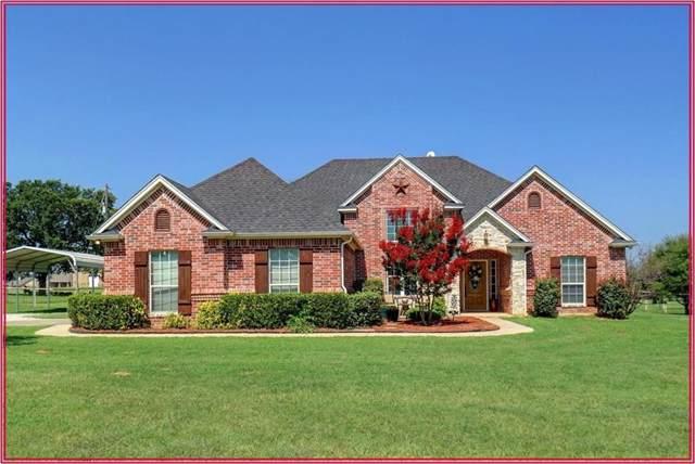 1252 Dobbs Trail, Springtown, TX 76082 (MLS #14137871) :: Lynn Wilson with Keller Williams DFW/Southlake