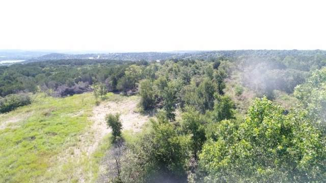 TBD Majestic Shores, Bluff Dale, TX 76433 (MLS #14138276) :: RE/MAX Town & Country