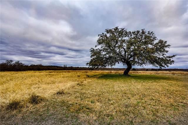 3895 Fm 51, Weatherford, TX 76085 (MLS #14138596) :: Team Hodnett