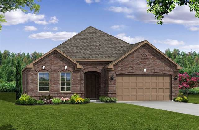 3002 Mulberry Avenue, Melissa, TX 75454 (MLS #14138618) :: RE/MAX Town & Country