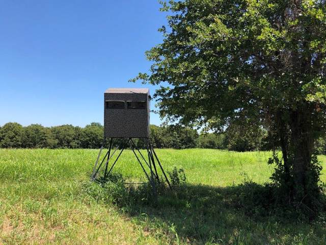 2300 Cobb Hollow Rd, Saint Jo, TX 76265 (MLS #14138742) :: Kimberly Davis & Associates