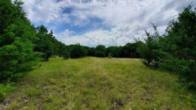 TBD Pr 1210, Kopperl, TX 76652 (MLS #14138887) :: All Cities Realty