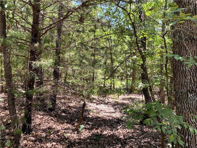 000 Vz County Road 2403, Canton, TX 75103 (MLS #14139000) :: Real Estate By Design