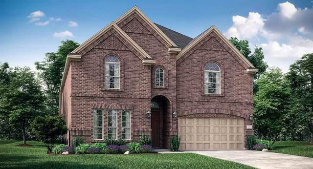 8249 Blumelia Drive, Dallas, TX 75252 (MLS #14140382) :: RE/MAX Town & Country