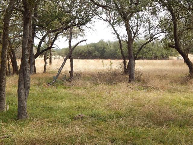 Lot A County Road 225, Florence, TX 76527 (MLS #14142995) :: HergGroup Dallas-Fort Worth