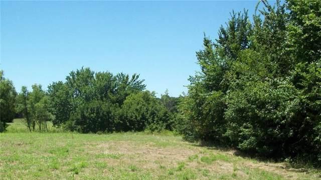 000 NE 23rd, Mineral Wells, TX 76067 (MLS #14143809) :: Team Hodnett
