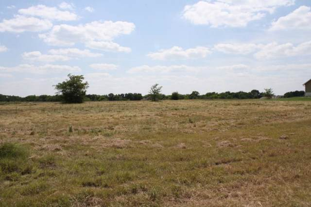 1033 Canyon Lake Road, Wills Point, TX 75169 (MLS #14148472) :: The Welch Team