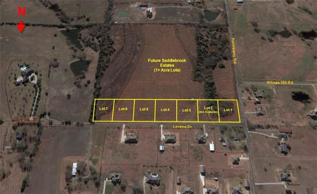 Lot 1 Lorene, Van Alstyne, TX 75495 (MLS #14149080) :: The Kimberly Davis Group