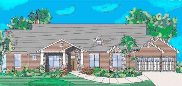 341 Tananger Springs, Denison, TX 75021 (MLS #14150371) :: All Cities Realty