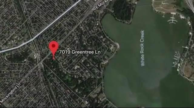 7019 Greentree Lane, Dallas, TX 75214 (MLS #14151046) :: Robbins Real Estate Group
