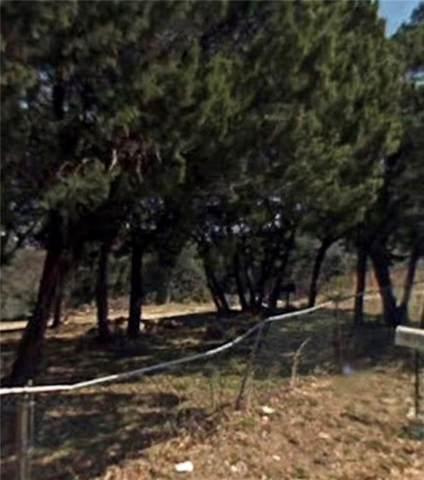 190 Cherokee Trail, Whitney, TX 76692 (MLS #14151180) :: Lynn Wilson with Keller Williams DFW/Southlake