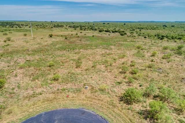 1120 Pheasant Court, Possum Kingdom Lake, TX 76449 (MLS #14151214) :: Tenesha Lusk Realty Group