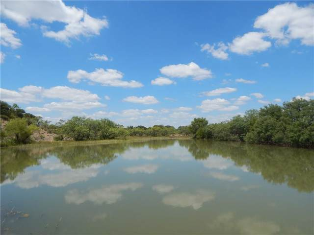6580 County Road 411 W, Brownwood, TX 76801 (MLS #14152412) :: The Mitchell Group