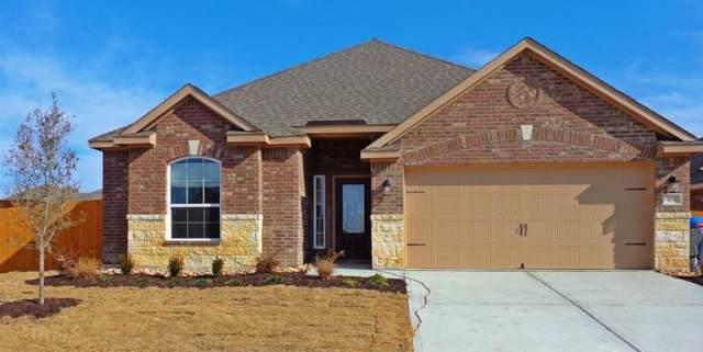 406 Lipizzan Lane, Celina, TX 75009 (MLS #14152417) :: The Heyl Group at Keller Williams