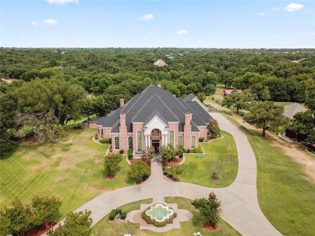 10 Home Place Court, Dalworthington Gardens, TX 76016 (MLS #14154658) :: Team Tiller
